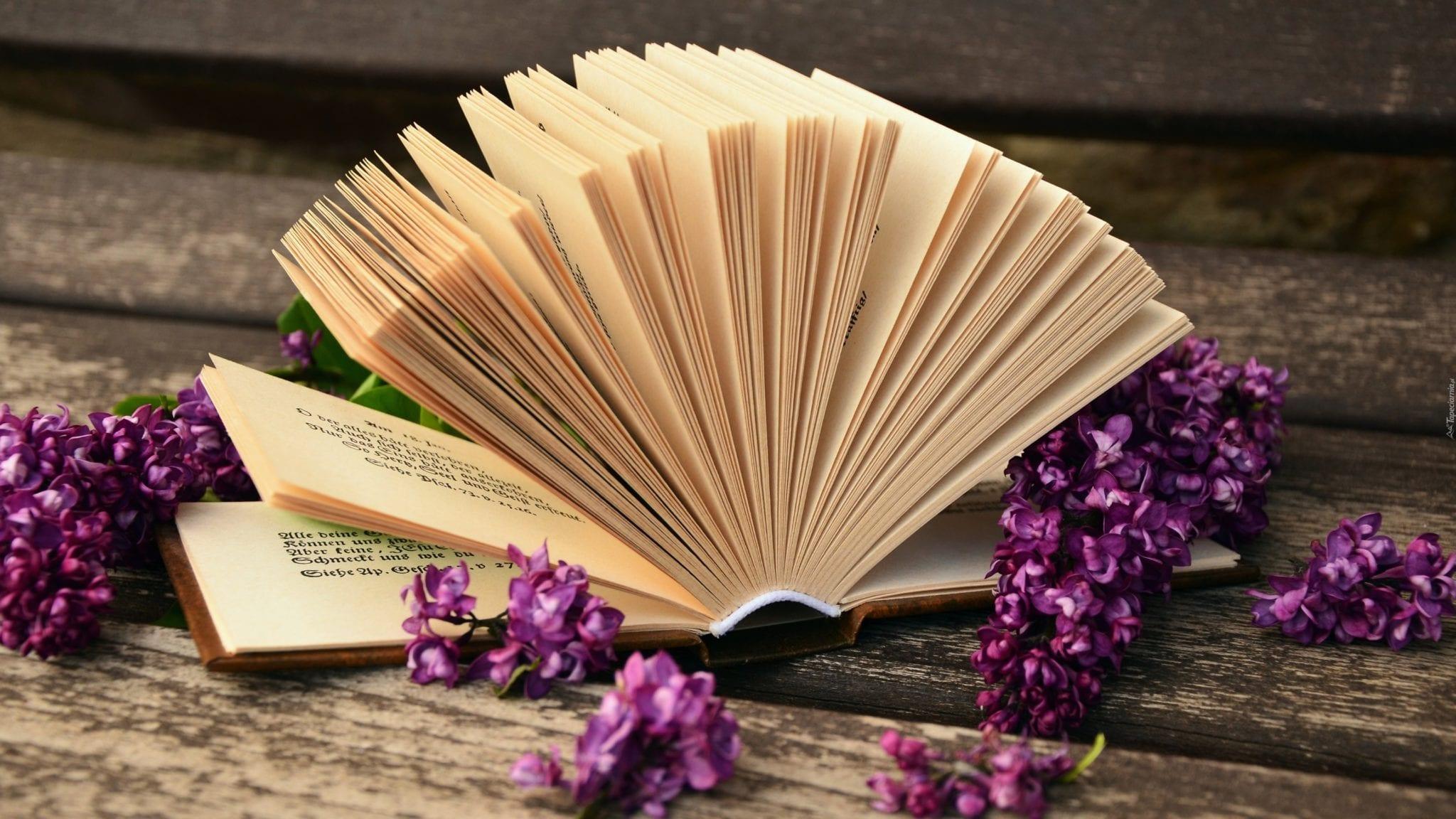 Read more about the article Bibliothérapie : les 10 livres qui peuvent t'aider à sortir d'une dépression